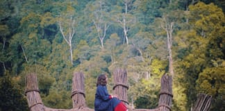 Bàn tay gỗ độc đáo ở Đà Lạt