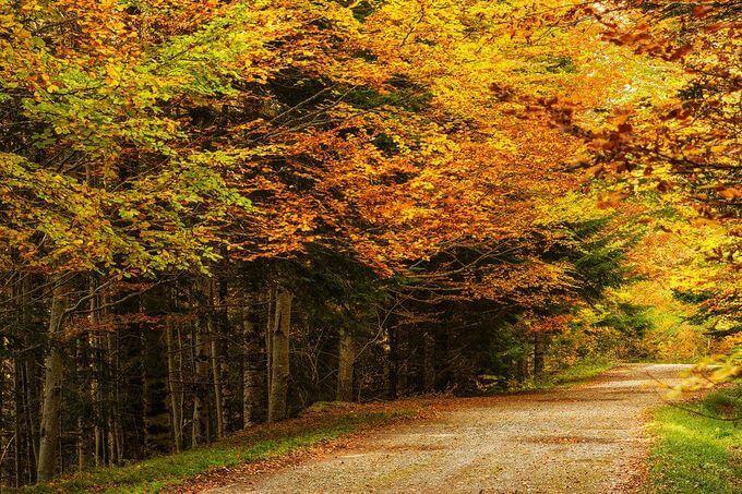Tại Aragon, nơi ngắm mùa thu đẹp nhất là vườn quốc gia Ordesa và Monte Perdido