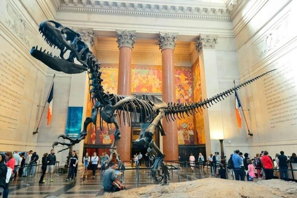 Một góc Bảo tàng Lịch sử tự nhiên Los Angeles