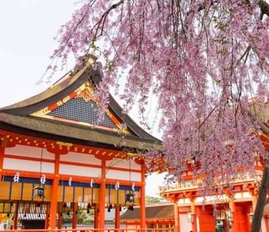 Có nên mua sim du lịch Nhật Bản hay thuê cục phát wifi