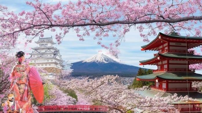 Điều bạn cần biết: Nên mặc gì khi đi du lịch Nhật Bản