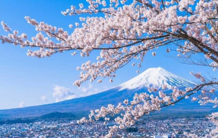 Kinh nghiệm 7 ngày du lịch Nhật Bản tự túc bạn nên biết.