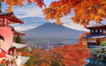 Lịch trình du lịch Nhật Bản tự túc 7 ngày bạn nên tham khảo